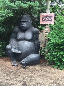 Sorry, fake gorilla.
